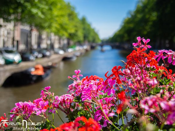 amsterdam-in-summer