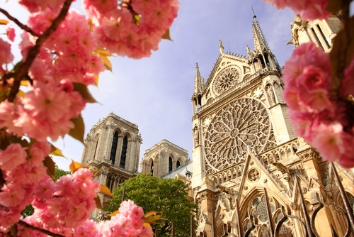 See 2 sides of Paris with Notre Dame and Sacre Coeur visits